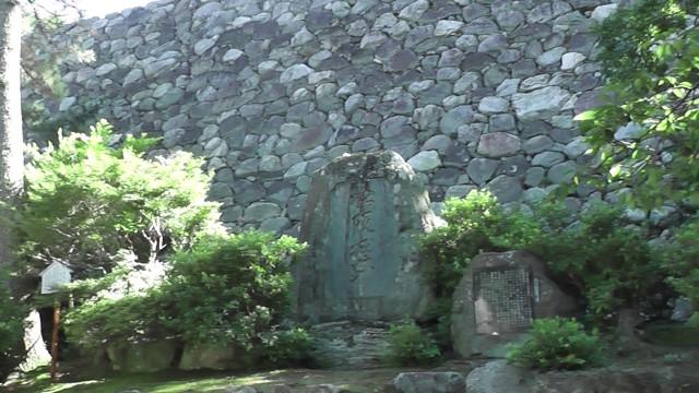2010-07-18_152334matuzaka