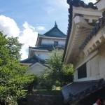 徳川御三家の居城、現在は癒しスポットの和歌山城へ(紀伊編1/3)