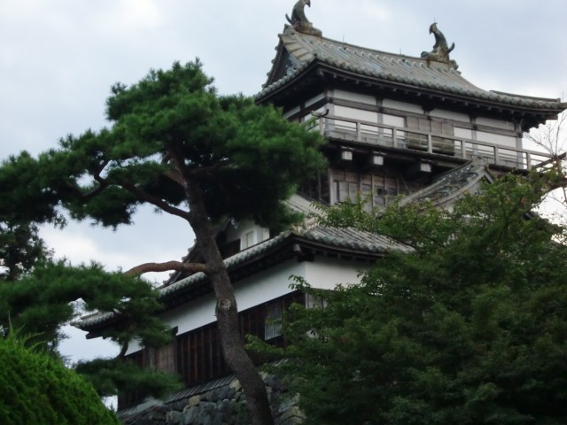 丸岡城写真1