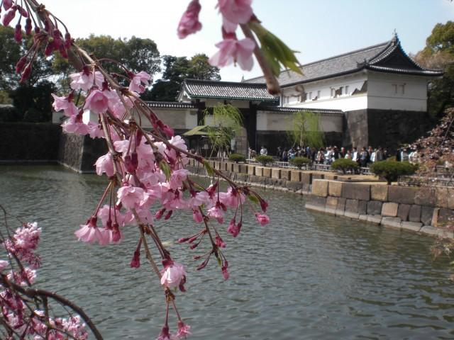 江戸城写真1