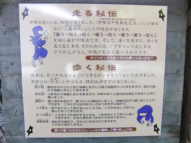 伊賀上野城写真4