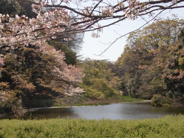 江戸城写真5