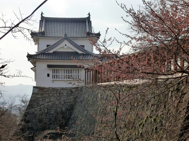 津山城写真5