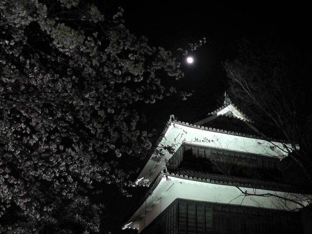 上田城写真3