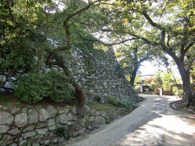 松阪城写真1