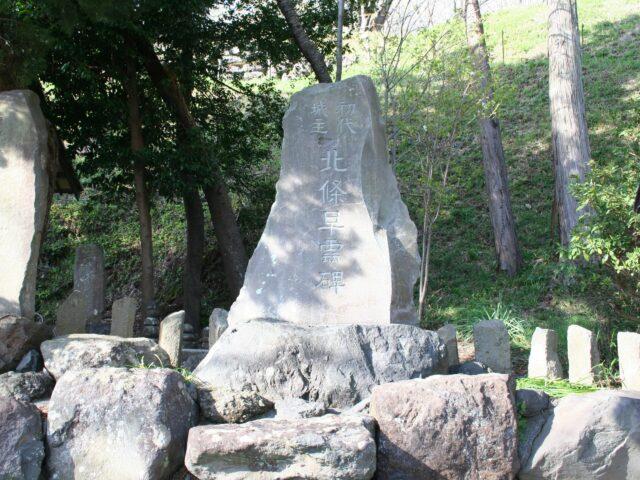 興国寺城写真3