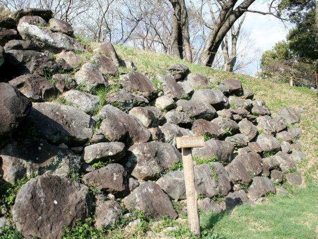 興国寺城写真4